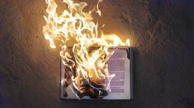 arde pământul